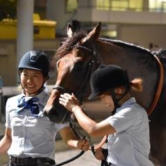ブースター号(佐藤博紀厩舎)と成瀬永美厩務員&佐藤里美厩務員