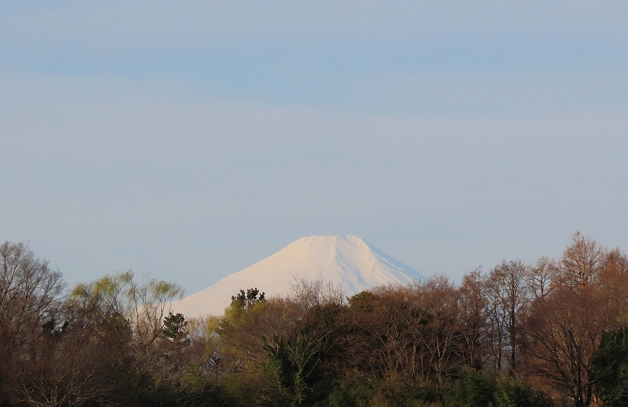 ①富士山IMG_1770_S
