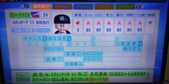 DSC_0041-2.jpg