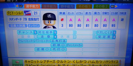 DSC_0042-2.jpg