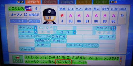DSC_0048-2.jpg