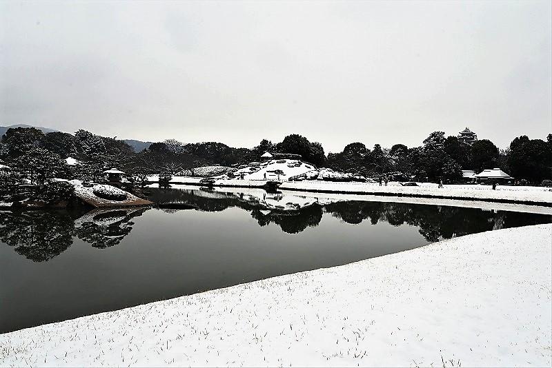 雪と丹頂15