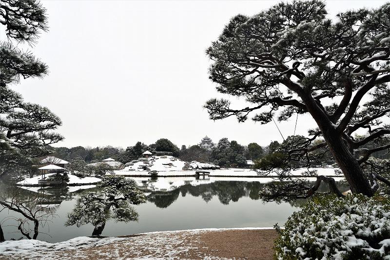 雪と丹頂17