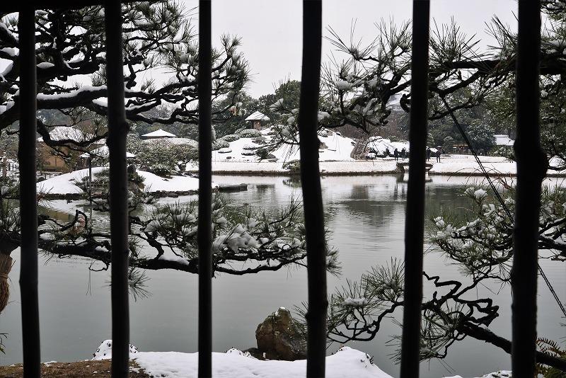 雪と丹頂18