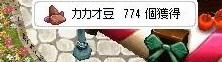 かかお774