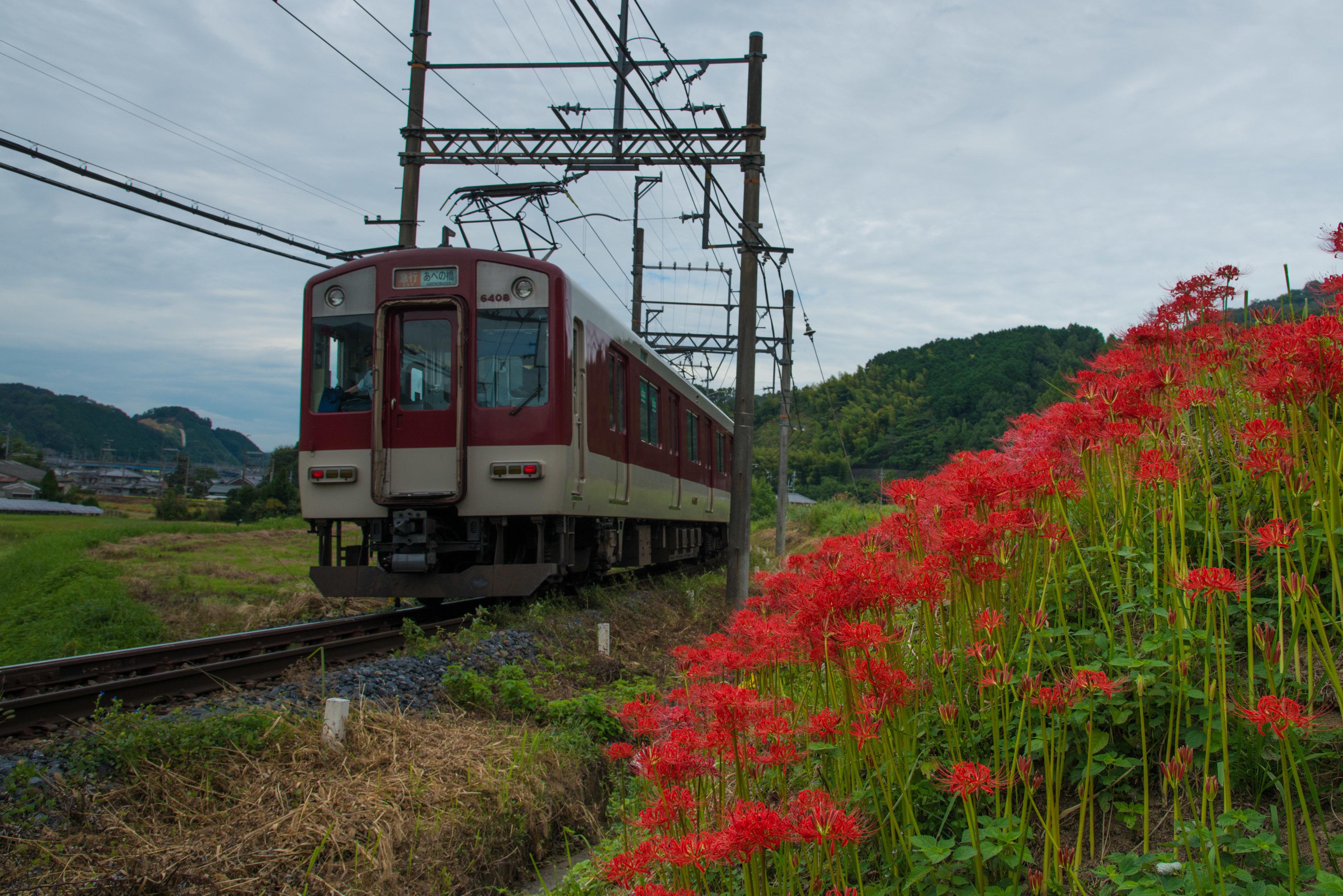 D80_1824.jpg