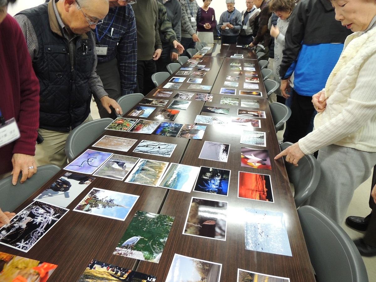 ④写真の展示と見学1