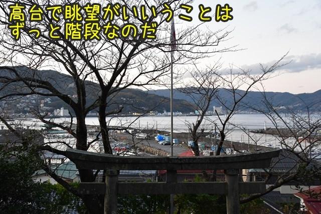 d-D75_3106.jpg