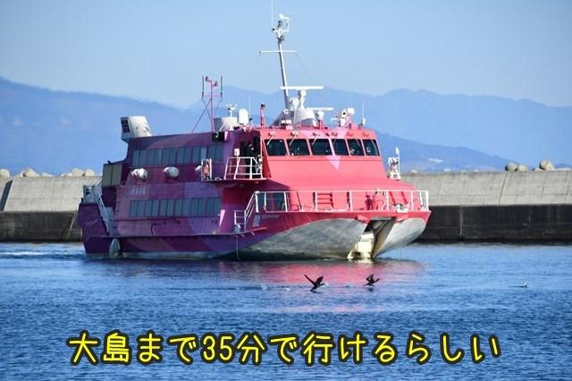 d-D75_3300.jpg