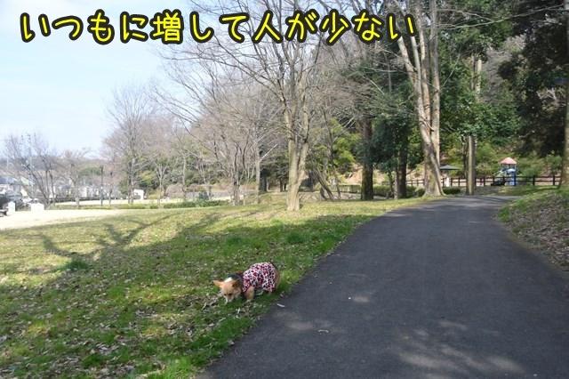 d-D75_4445.jpg
