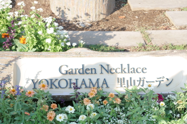 秋の里山ガーデン00080146