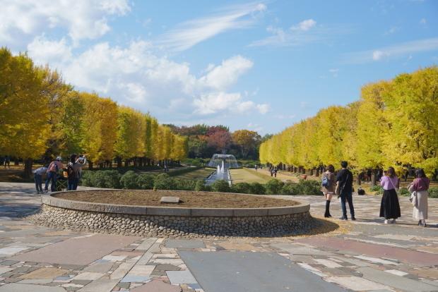 昭和記念公園00080920