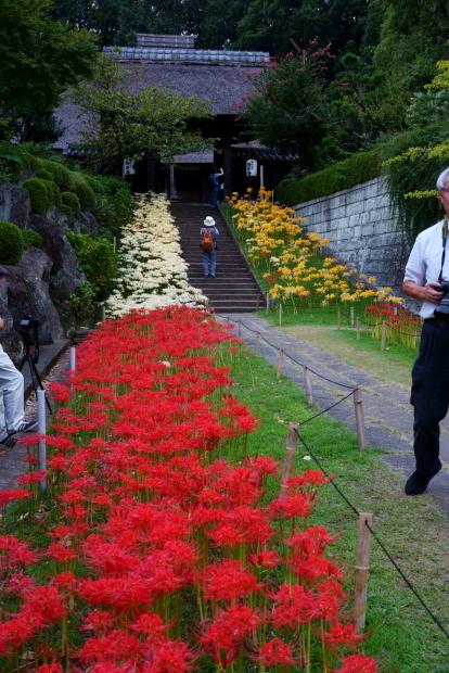 里山ガーデン 西方寺00080259