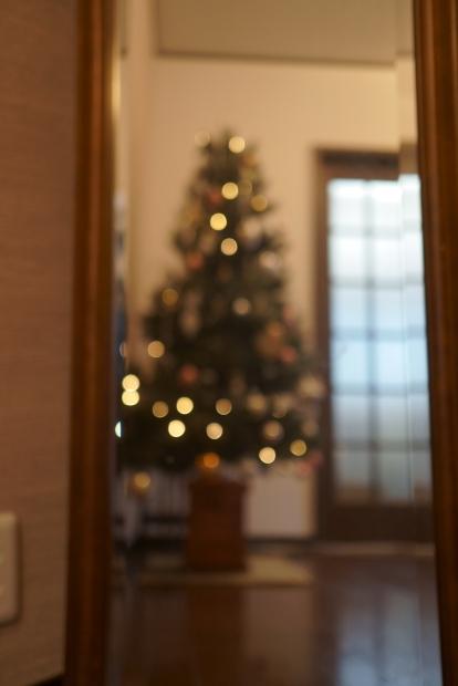 クリスマスツリー出した00081249
