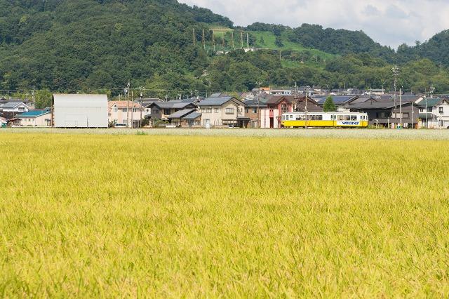 fukutetsu735-44.jpg