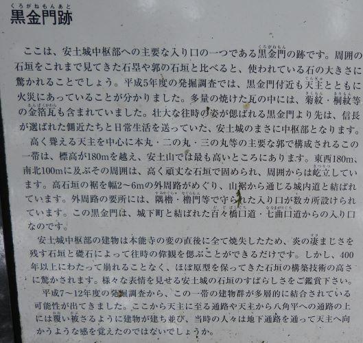 P1030275 (2)