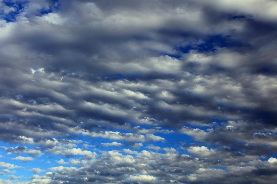 図鑑的な層積雲が出た日