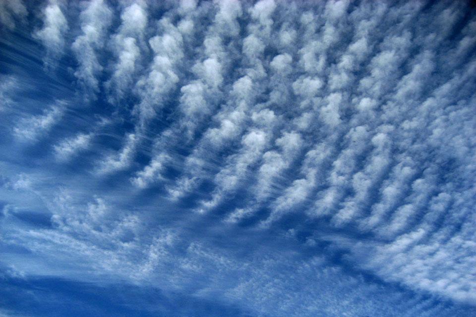交差する毛状巻雲と波状巻積雲