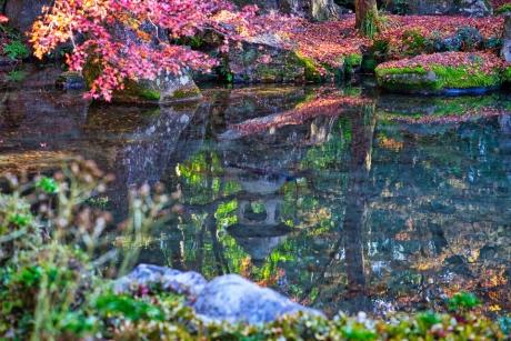 2019_kyoto_autumn_11.jpg