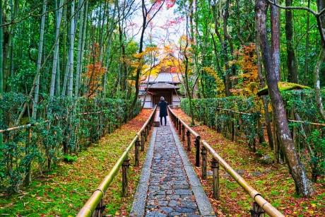 2019_kyoto_autumn_12.jpg