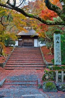 2019_kyoto_autumn_21.jpg
