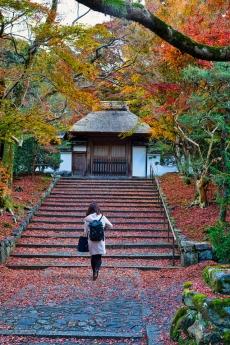 2019_kyoto_autumn_23.jpg