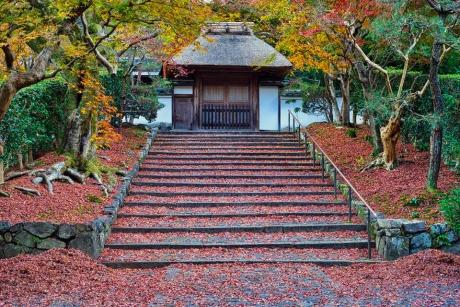 2019_kyoto_autumn_24.jpg