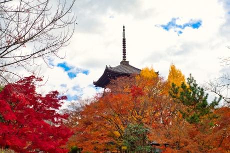 2019_kyoto_autumn_25.jpg