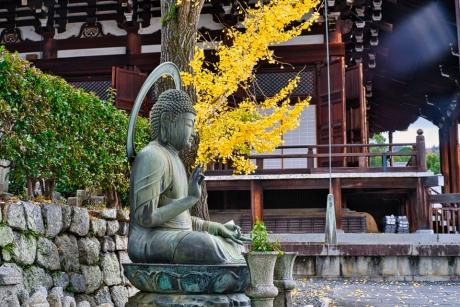 2019_kyoto_autumn_32.jpg