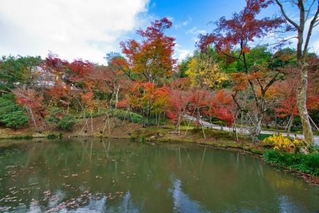 2019_kyoto_autumn_43.jpg