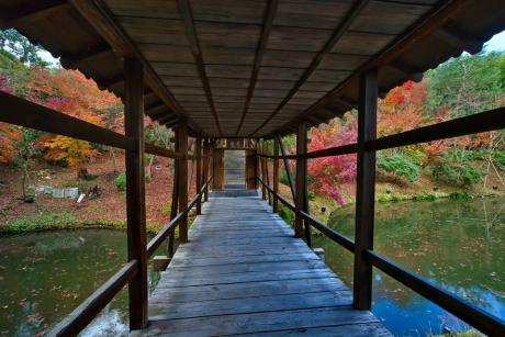 2019_kyoto_autumn_45.jpg