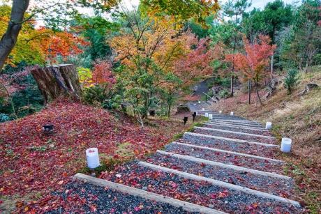2019_kyoto_autumn_47.jpg