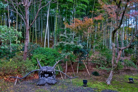 2019_kyoto_autumn_49.jpg