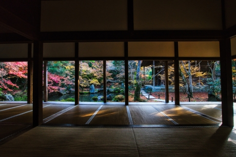 2019_kyoto_autumn_9.jpg
