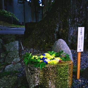 hanachouzu_4.jpg