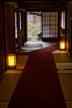 kagoshima_5_20200222160834892.jpg