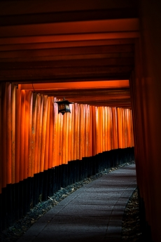 kyoto_2020_3.jpg