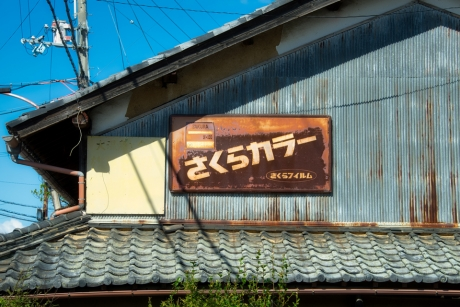 sakura_n100.jpg
