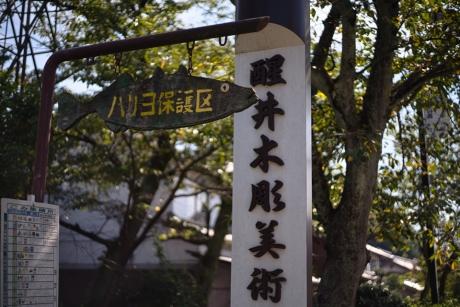 samegai_2.jpg