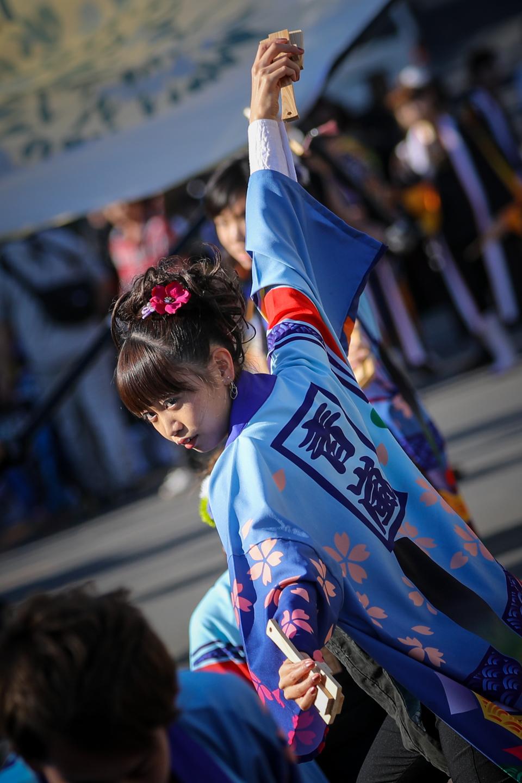 miyasei2019oya-8.jpg