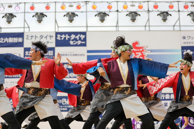 shachi2019kamisu-8.jpg