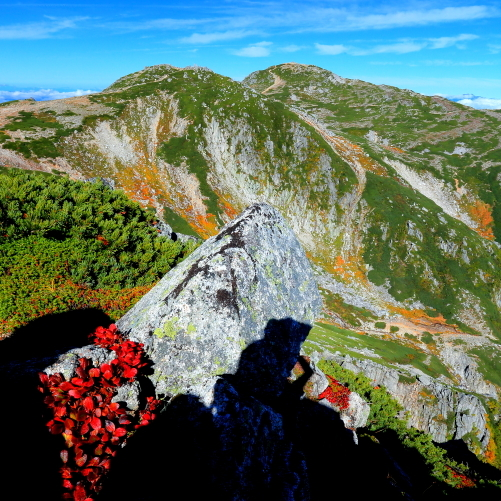 紅葉彩る西駒ヶ岳