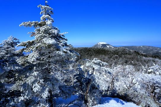 横岳山頂の樹氷と蓼科山