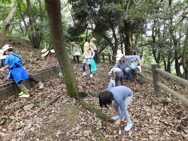 池田自然観察会2019年10月