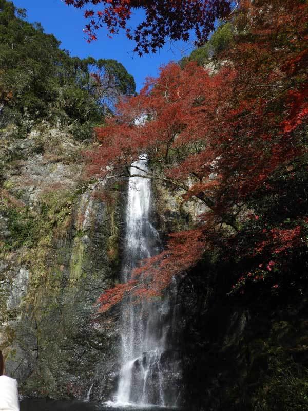 箕面大滝と紅葉