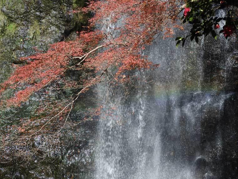 箕面大滝と紅葉と炊きにかかる虹
