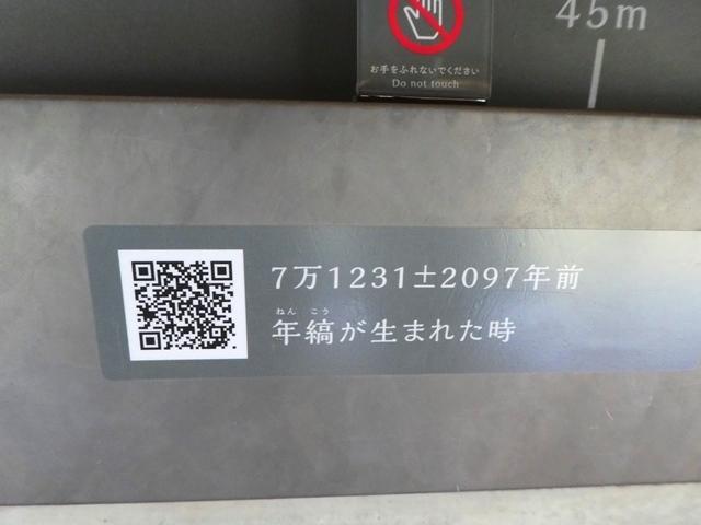 011P1160107.jpg