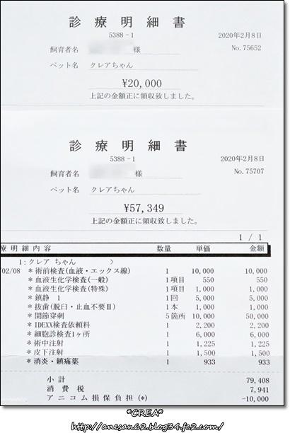 020212-7.jpg