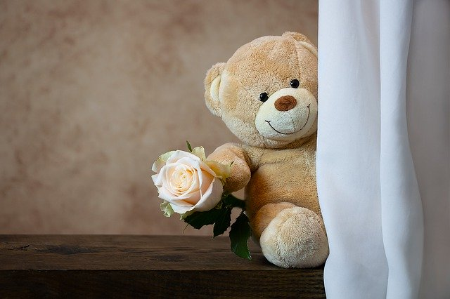 rose-4788688_640.jpg