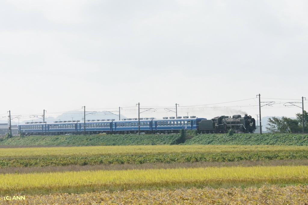 SL-Kitabiwako-go_2019-10_1_1024ANN_683.jpg